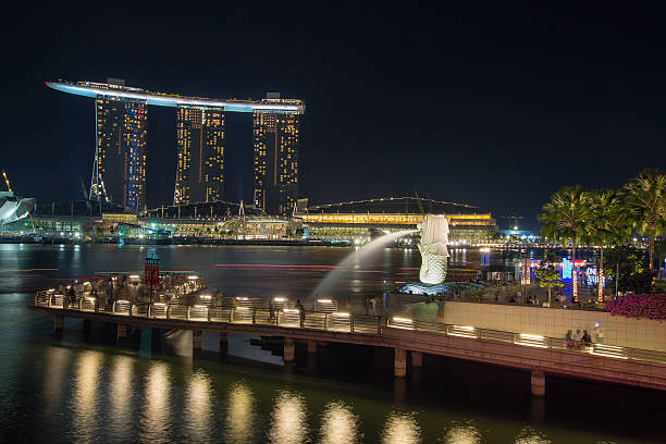 Singapore Merlion Park at Night SINGAPORE - AUGUST 28: Singapore Merlion Park Along the Mouth of Singapore River at Night on August 28, 2010 is one of the top most visited tourist attraction in Singapore. merlion fictional character stock pictures, royalty-free photos & images