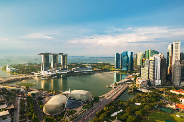 singapore: motorboat crossing marina bay. cloud garden and supertrees grove fviewed from marina east park with flowers on foreground - marina bay sands stock photos and pictures