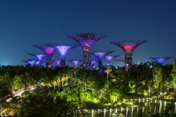 singapore night skyline at gardens by the bay - marina bay sands stock photos and pictures