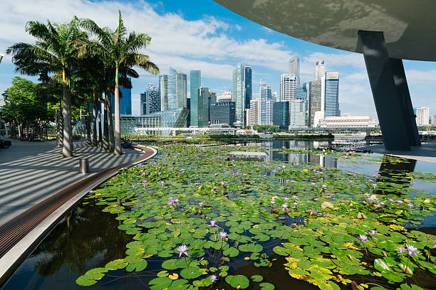 Singapore Skyline. Singapore, Singapore -April 7, 2014: Singapore Central Business district skyline view with a  blooming lily pond at the Art Science Museum building. esplanade theater stock pictures, royalty-free photos & images