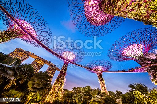 Singapore, Singapore - November 4, 2016: Illuminated Supertrees and Skywalk in Gardens by the bay in Singapore at night