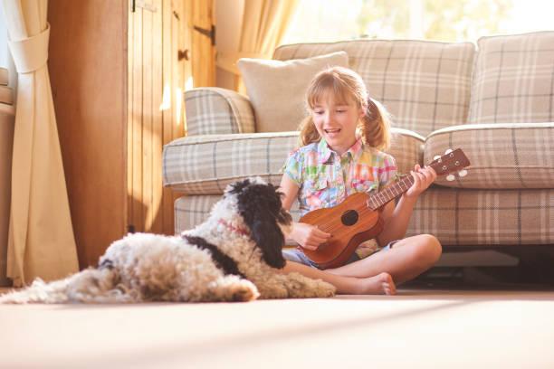 singen, um ihr haustier hund - ukulele songs stock-fotos und bilder