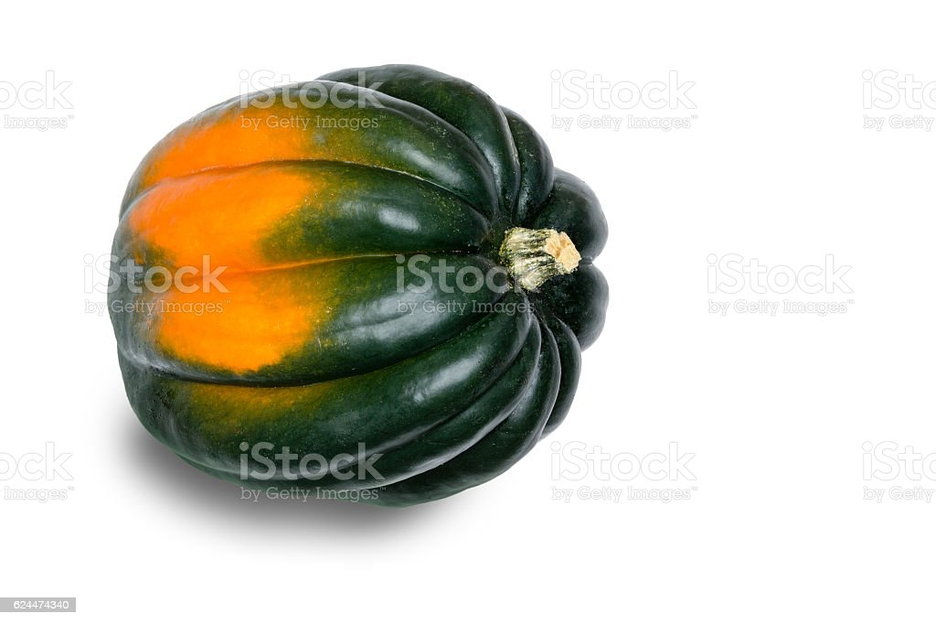 Single Acorn Squash on White Background stock photo