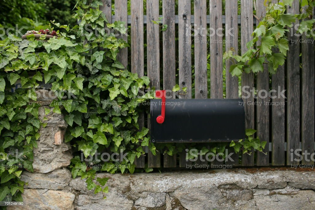Single black mailbox sits on of a wooden fence. grape leaves or vine Single black mailbox sits on of a wooden fence. grape leaves or vine. Accessibility Stock Photo