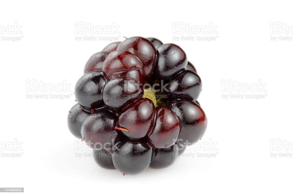 Single blackberry royalty-free stock photo
