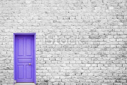istock Single Blue Door 519623876