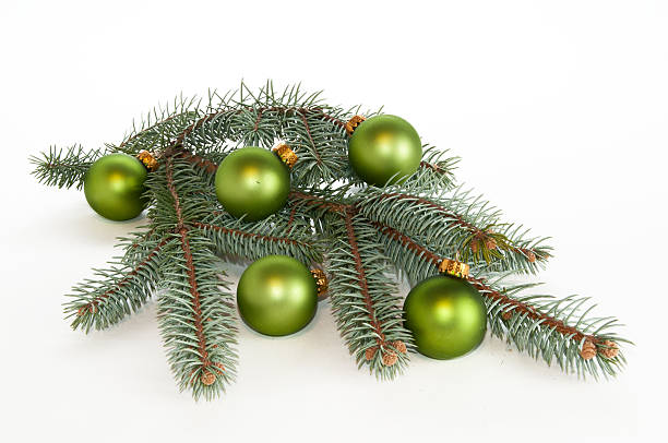 Single branch of evergreen decorated with green ornaments