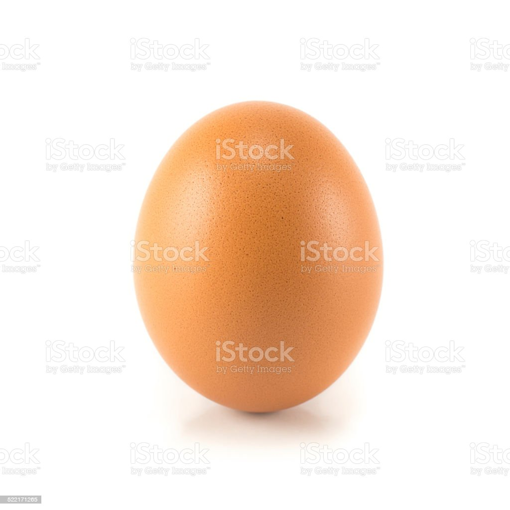 Single brown chicken egg isolated on white stock photo