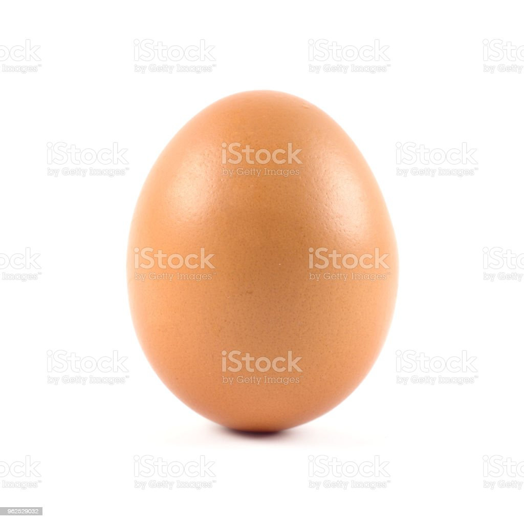 Single brown chicken egg isolated on white - Royalty-free Animal Stock Photo
