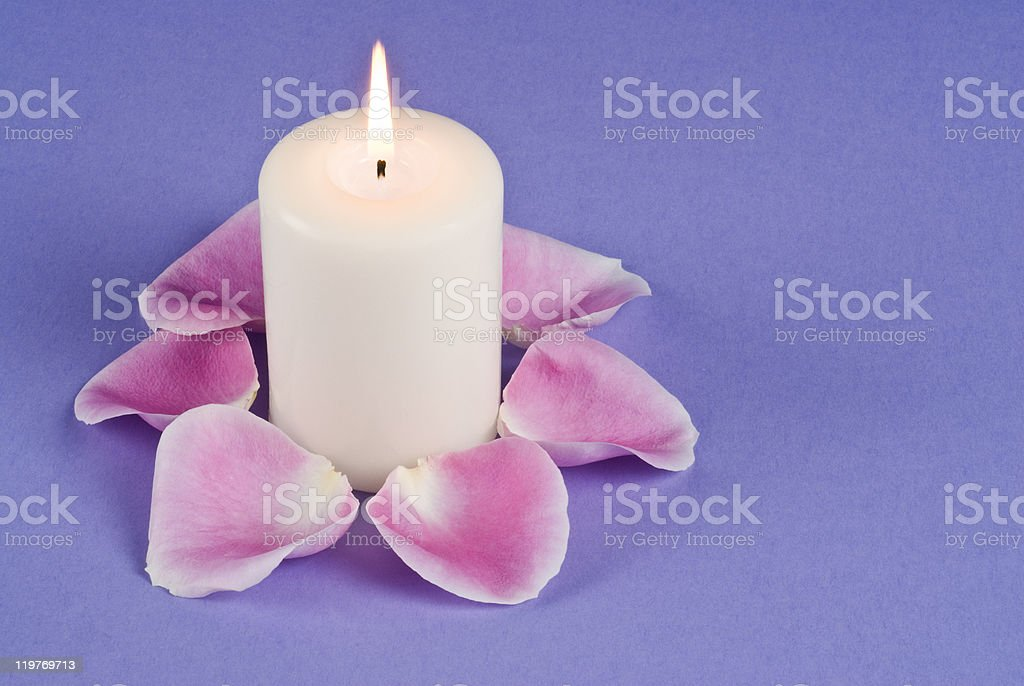 Single Candlelight and Pink Rose Pedals stock photo