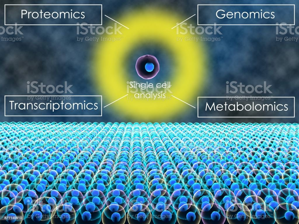 Single cell analysis stock photo