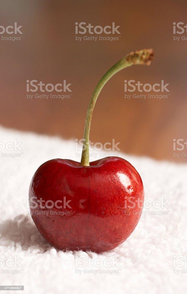 single cherry sitting up stock photo