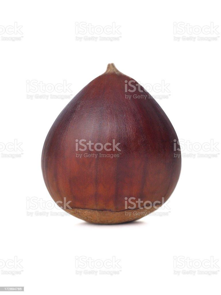 Single chestnut royalty-free stock photo
