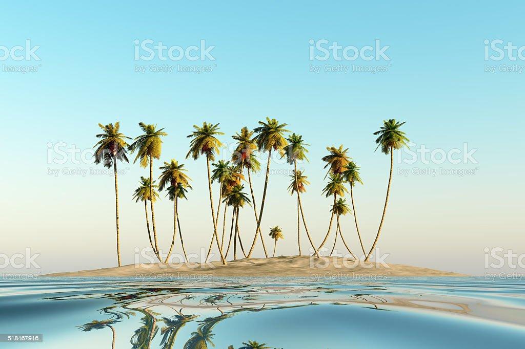 single coconut island stock photo