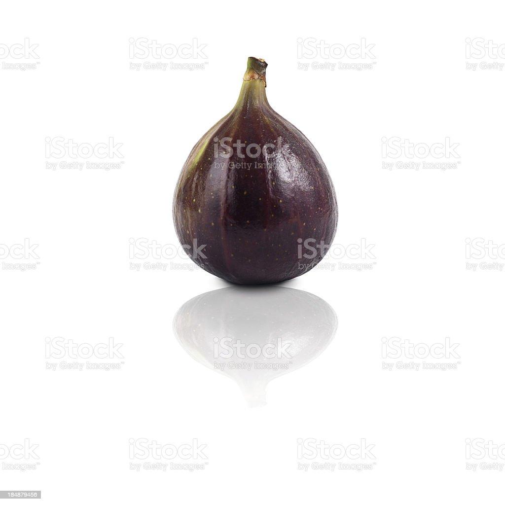 single fig isolated stock photo