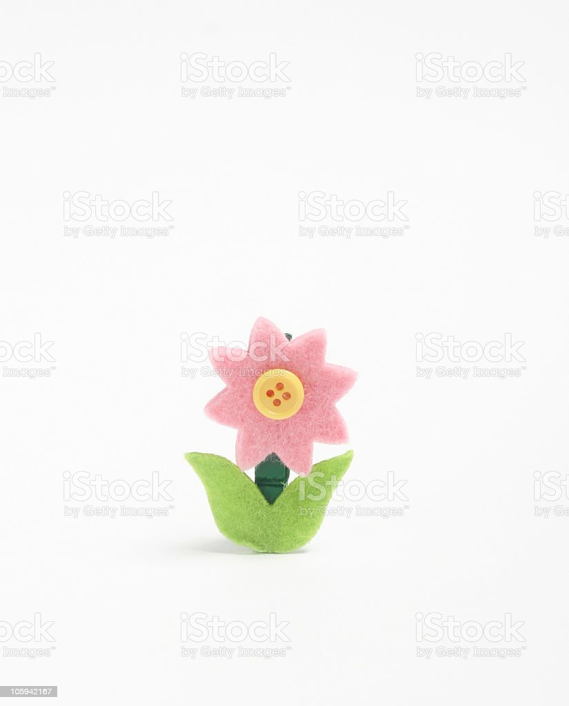 Single Flower On White Background Stock Photo More Pictures Of