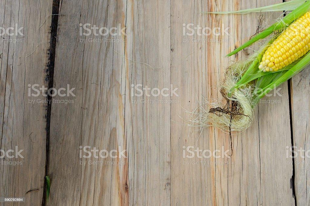 Single fresh on cobs on rustic wooden table royaltyfri bildbanksbilder