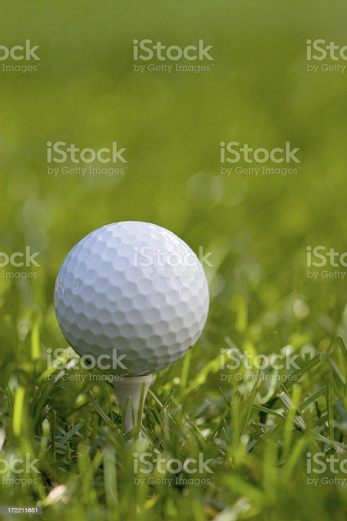 Single Golf ball on tee. stock photo