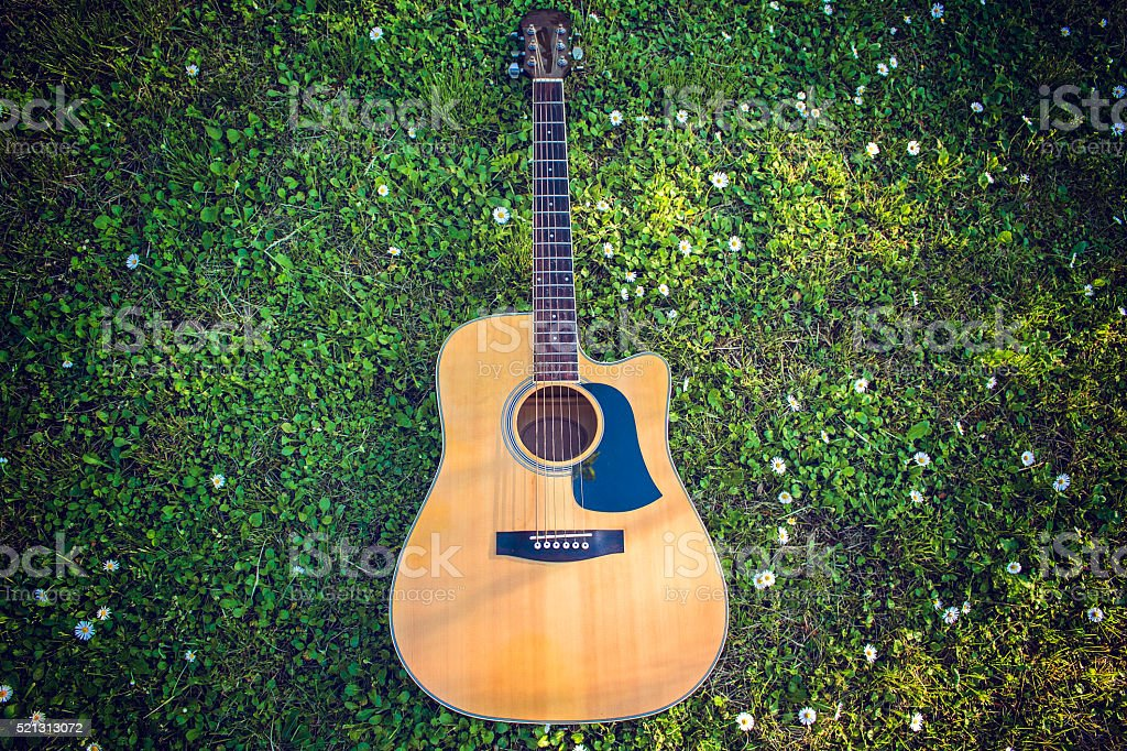 Single Guitar Laying On Grass stock photo