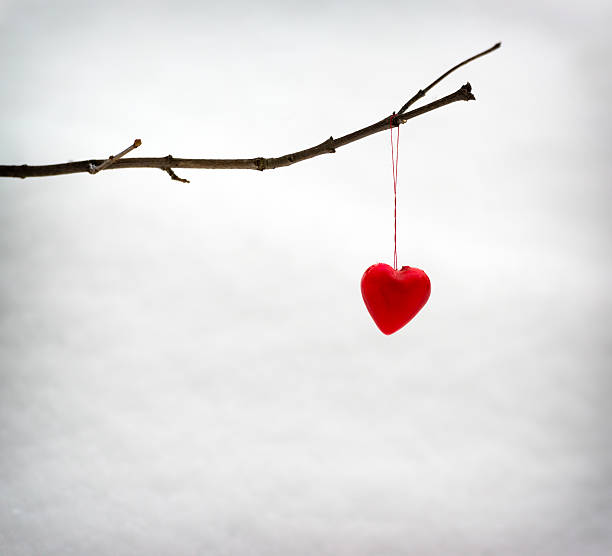 Single Heart Hanging on a Tree Branch in Winter stock photo