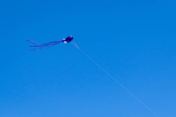 Single kite stock photo
