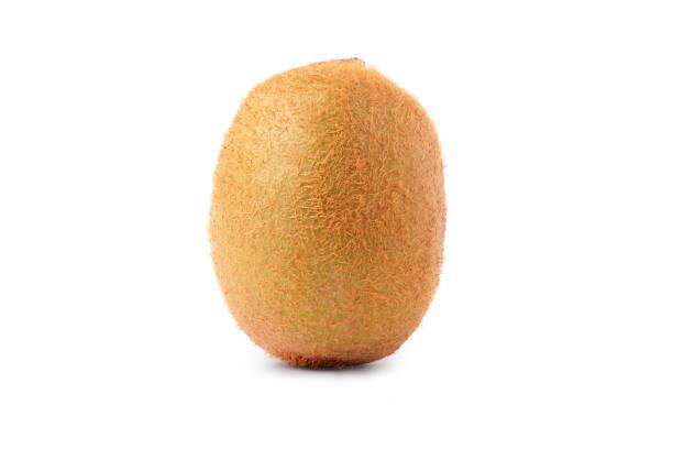 single kiwi fruit isolated on white background - kiwi imagens e fotografias de stock
