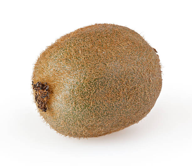 a single kiwi on a white background - 奇異果 個照片及圖片檔
