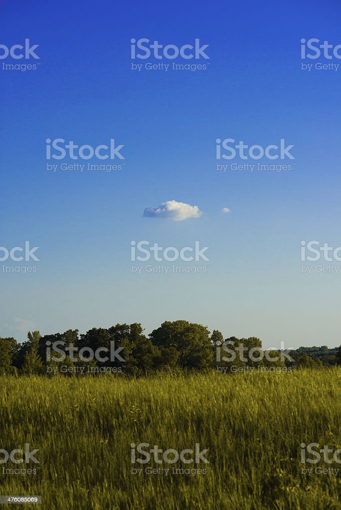 Single lone cumulous cloud over Minnesota field stock photo