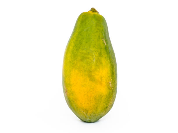 single Papaya with white background stock photo