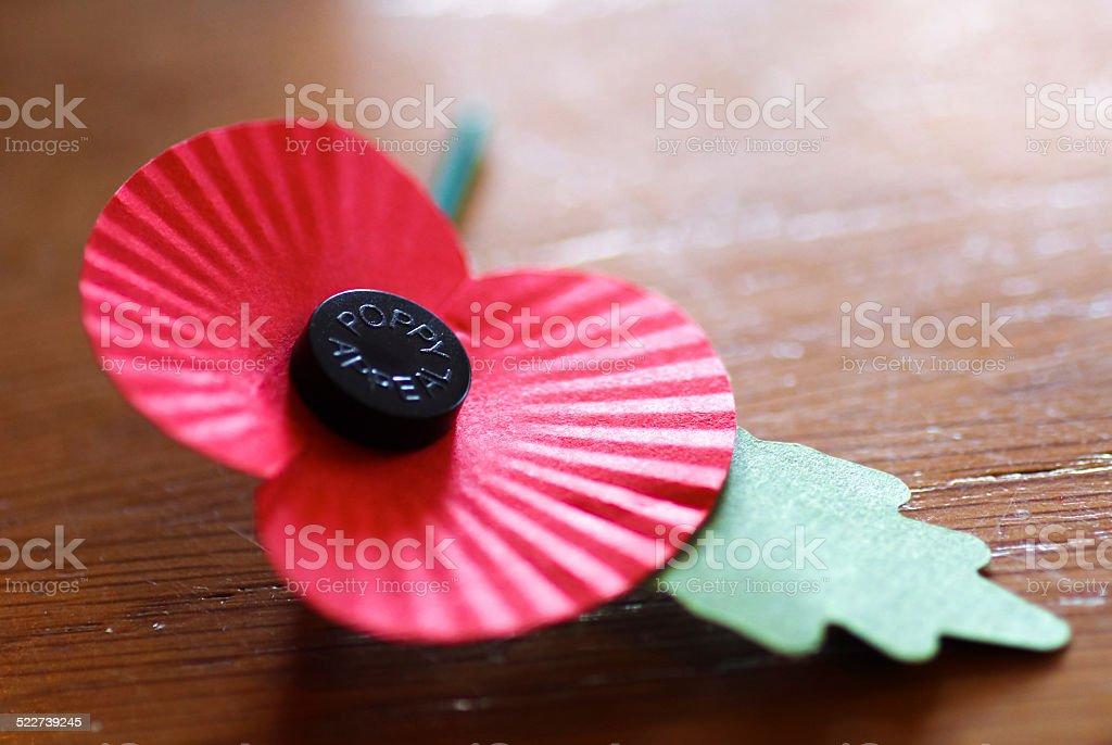 Single paper remembrance sunday poppy stock photo