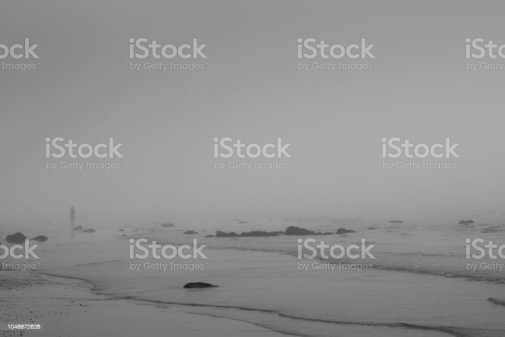 Single person standing on misty winter beach – zdjęcie