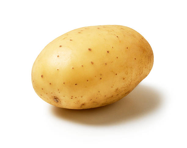 single Potato stock photo