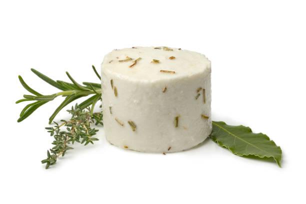 Single preserved white organic Dutch goat cheese stock photo