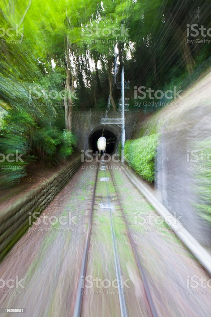 Single Railway in the Forest royalty-free stock photo