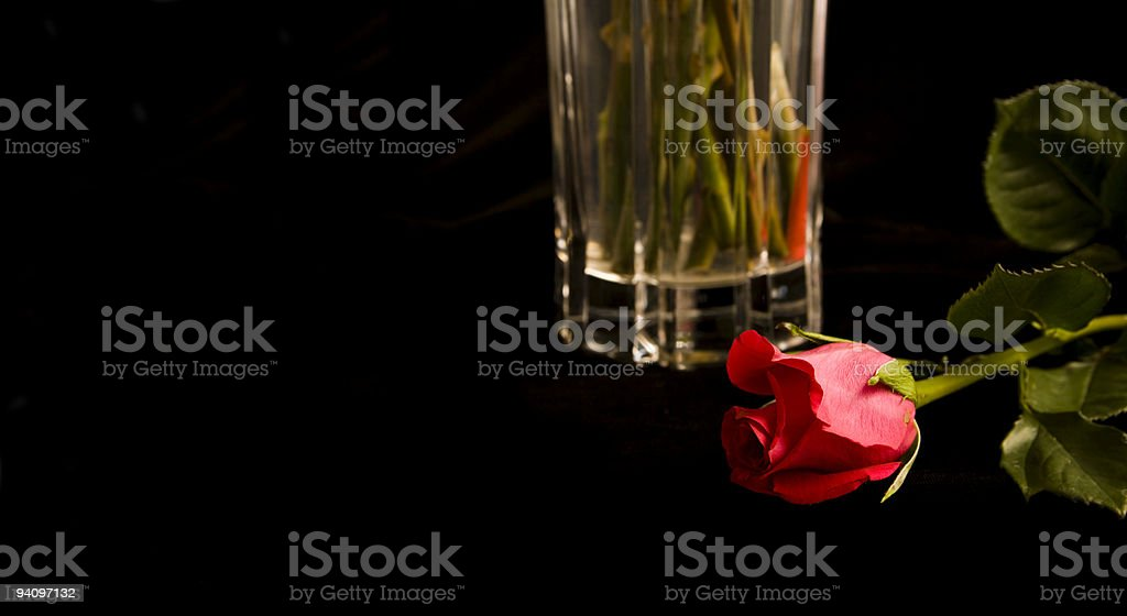 single Red rose in front of crystal vase royalty-free stock photo