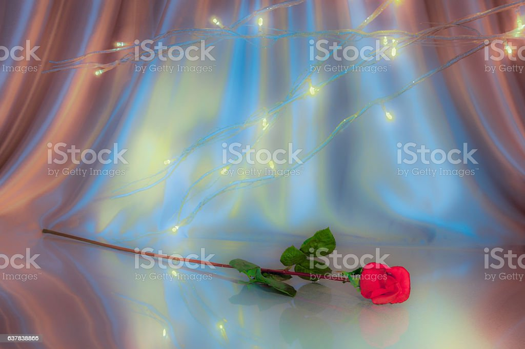 Single Red Rose Surrounded by lit branches and Satin (P) stock photo