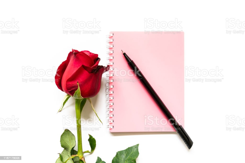 A single red rose with a pink note book and a pen isolated on white...