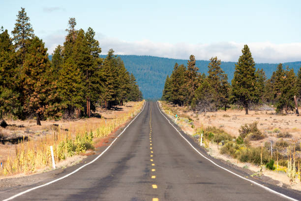 Single Road stock photo