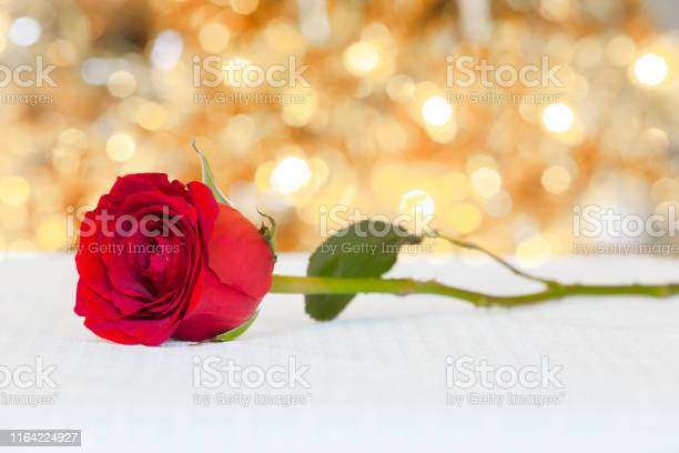 Single rose on a table picture id1164224927?b=1&k=6&m=1164224927&s=612x612&h=hqbf2yubwkyr5sawla6kholljszt j7xsgwtlh0cxpe=