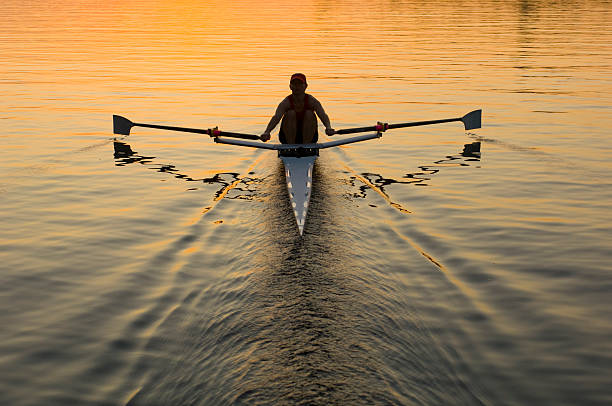 Single Rower In Sunrise Single female rower in sunrise individual event stock pictures, royalty-free photos & images