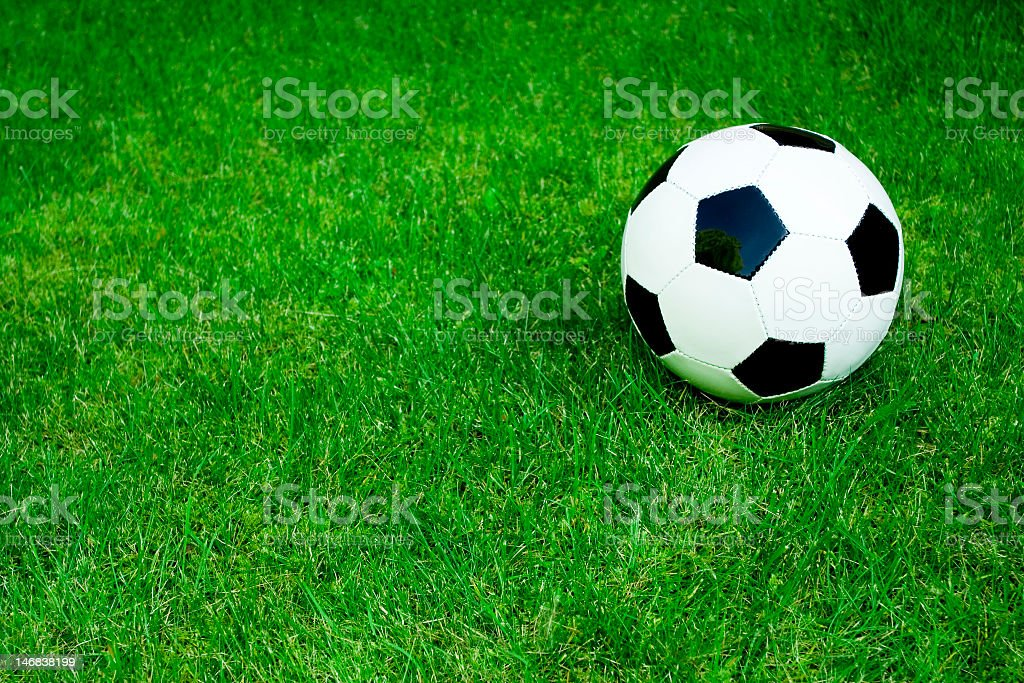 Single soccer ball on the green grass royalty-free stock photo