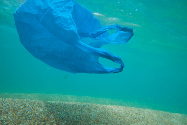 single use plastic bag floating underwater in the sea. - trash stock pictures, royalty-free photos & images