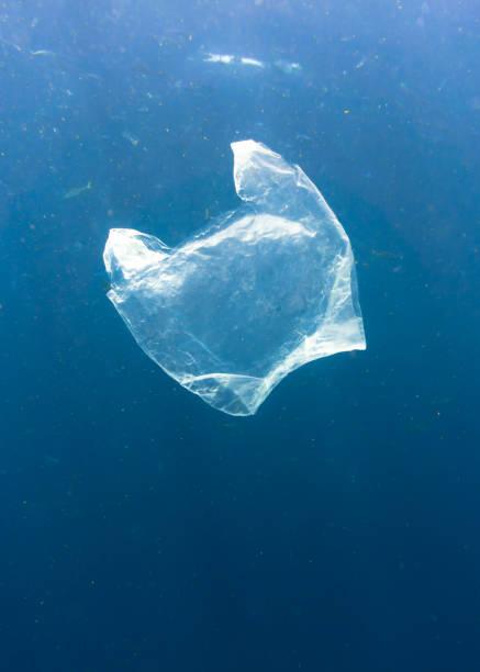 plastique à usage unique dans le milieu d'écosystème océanique - sac en plastique photos et images de collection