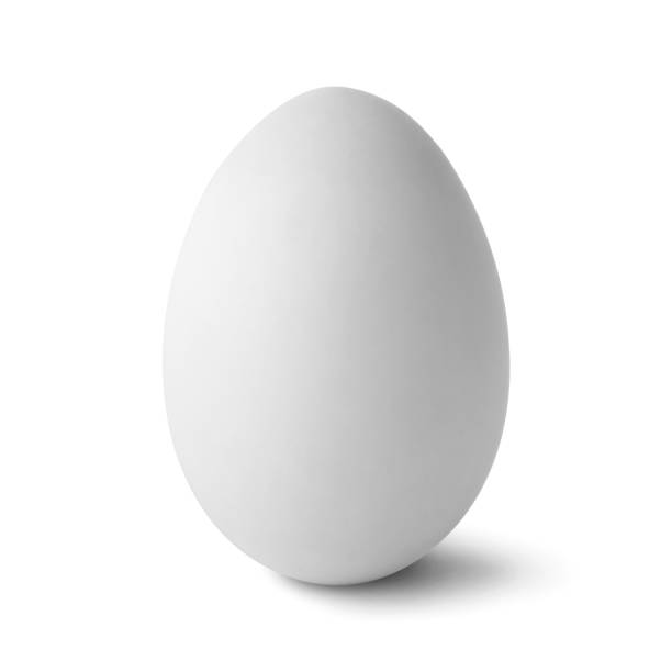 single  white egg isolated on white - uovo foto e immagini stock