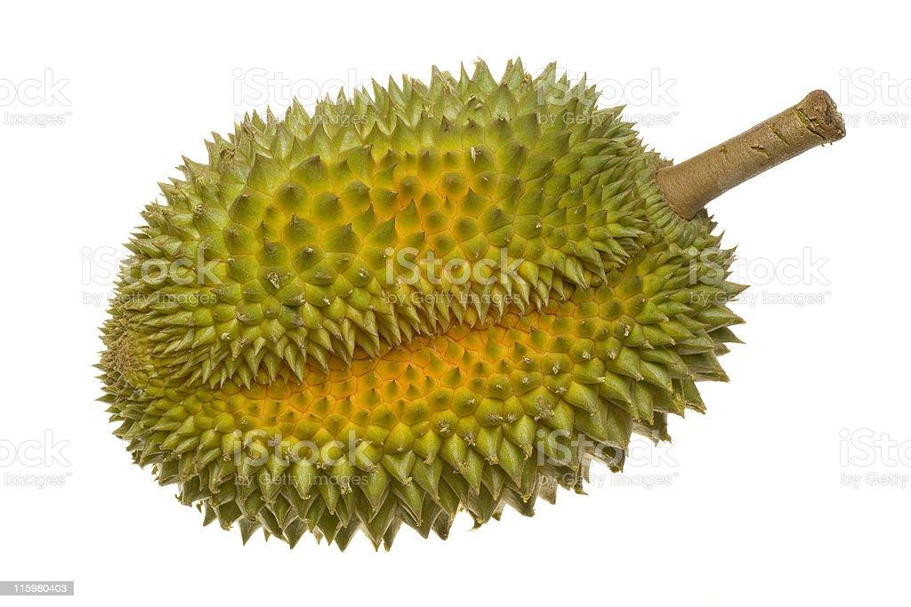 Single whole durian stock photo