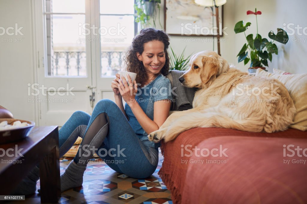 Single, woman at home with technology. stock photo