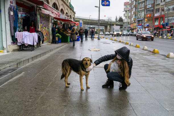 Single woman caressing dog on the sidewalk of empty Kadikoy street. stock photo