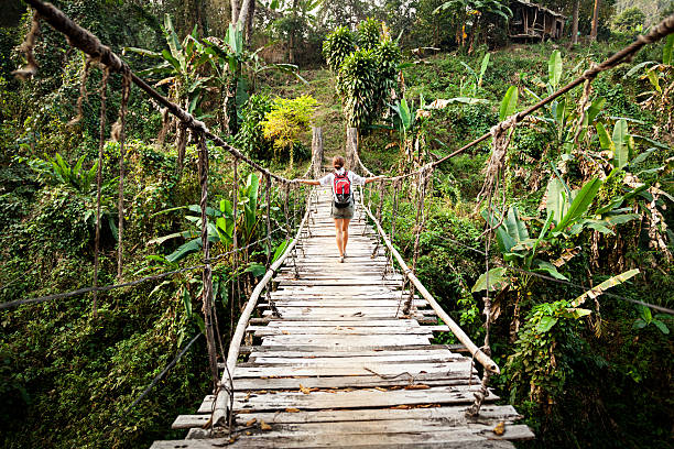 single woman with backpack on suspension bridge in rainforest - asma köprü stok fotoğraflar ve resimler