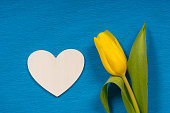 istock single yellow tulip with white wooden heart shape on blue craft paper background 1203515613