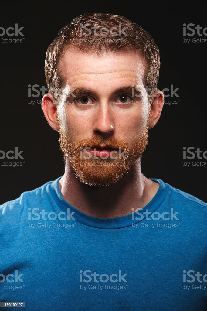 Single Young Man with Red Beard royalty-free stock photo